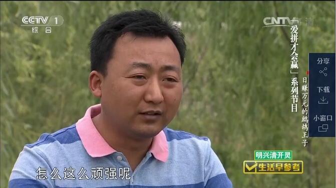 CCTV1 珍禽王子日赚万元