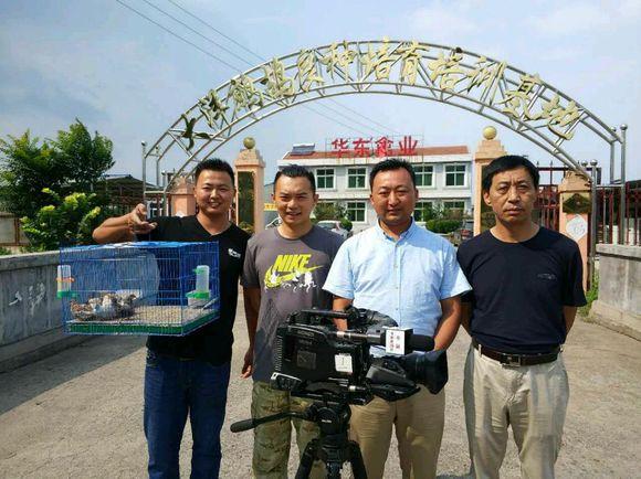CCTV7 每日农经栏目组来我厂采访